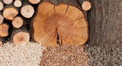 2019 Wood Pellet Markets Outlook